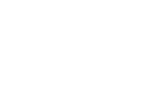 Linex Logo White